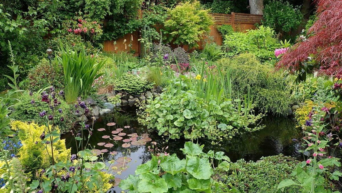Photo Essay: A south Oak Bay garden